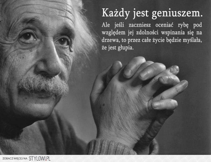 http://img1.stylowi.pl//images/items/l/201211/stylowi_pl_inne_andquotkazdy-jest-geniuszem-ale-jesli-zaczniesz-oc_2094367.jpg