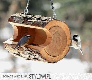 oryginalny karmnik, dla ptaków, DIY, nowoczesny, ciekawy, drugie życie rzeczy, jak zrobić karmnik, eko, eco, stylowy, domek dla ptaków, Nowe wcielenie przedmiotów, Innowacyjne rozwiązania, bird feeder