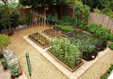 Omega Hydroponic Garden Gets Five Times As Much Food Per Watt as well Building A Herb Spiral also Patio Software additionally Index together with 41068668. on design a vegetable garden layout