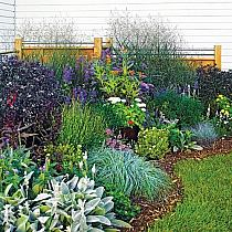 Rhs Advice How To Get The Most Out Of Your Narrow Borders besides Design For A Small Garden as well Raised Bed Vegetable Garden together with Plants For Partial Sun further Sxema Cvetnika Cvetushhego Vse Leto. on perennial flower garden design plans
