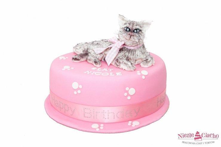 Różowy Tort Z Kotem Kot Na Torcie Kotek Tort Urodzin Na Stylowipl