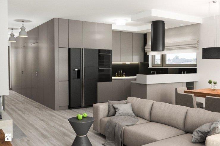Projekt Wnętrz Mieszkania Mały Salon Z Kuchnią Z Jada Na