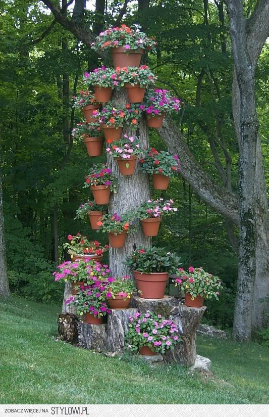 Doniczki Na Pniu Drzewa Na Stylowipl