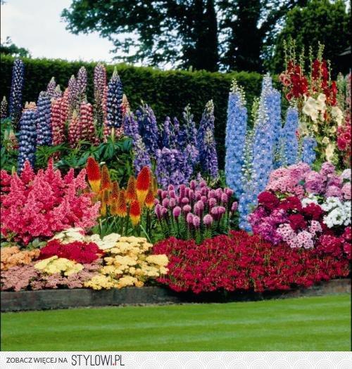 Szpilkuj Pl Ciekawe Ogrody Piekne Kwiaty Tak Ladnie Na Stylowi Pl