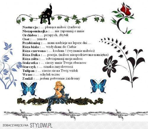 Symbole Kwiatów I Ich Znaczenie 2 Na Stylowipl