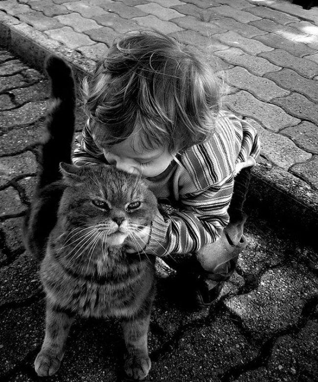 Fotografia infantil  - Página 8 Stylowi_pl_dziecko_kazde-dziecko-powinno-miec-kota-_36641818