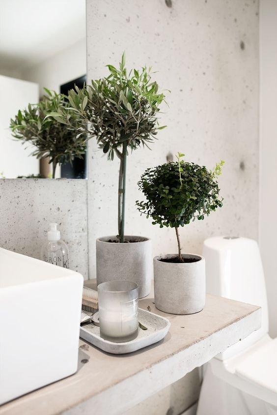 Ozdobne Drzewka W łazience Dekoracja łazienki Na Stylowipl