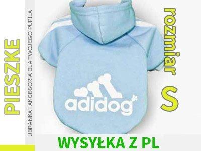 Chcesz by Twój pies był również stylowy? Adidas nie ma… na